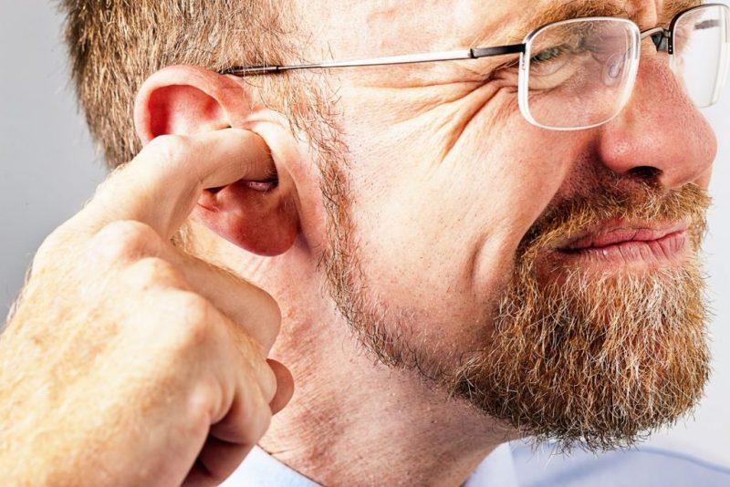کیپی یا پری گوش